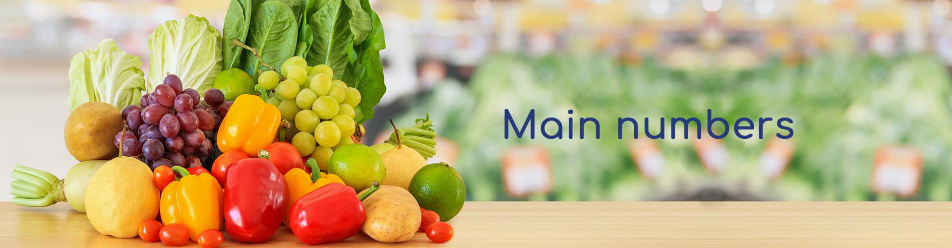 Main numbers Martimar