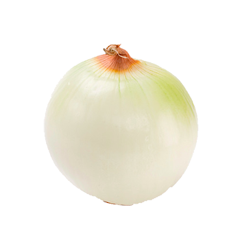 Cebolla pelada Martimar