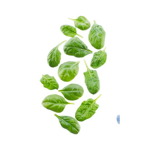 Hierbas aromáticas Martimar