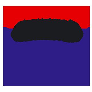 Champiñones Copechamp Martimar
