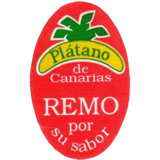 Plátano de Canarias Remo
