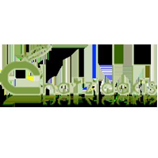 Chatzidakis